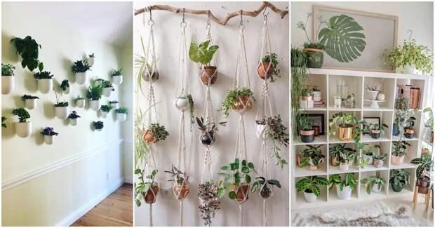 15+ великолепных идеи с растениями для маленьких и больших пространств