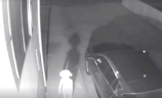Странное существо попало на городскую камеру наблюдения