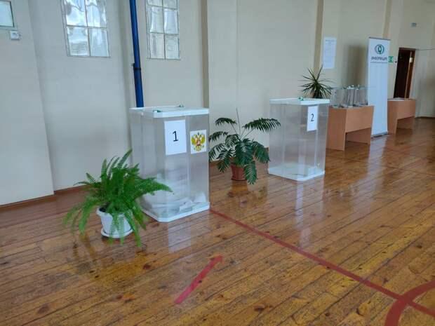 После обработки первых протоколов в Удмуртии поправки в Конституцию поддержали 71,05% избирателей