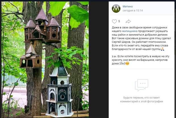 Фото дня: новый жилой комплекс для птиц введён в эксплуатацию на Барышихе