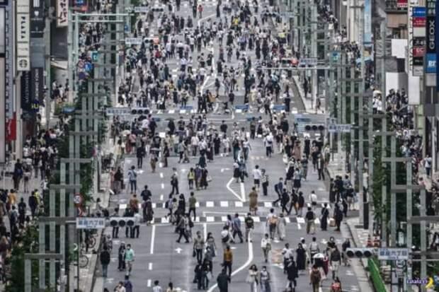 В объективе Япония — август 2020