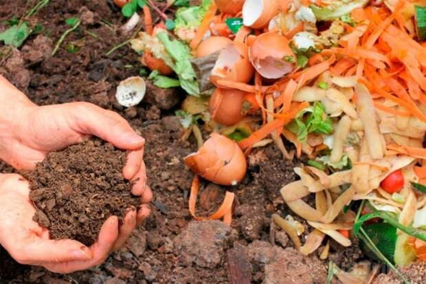 С помощью компоста можно природным способом обогатить землю на участке, тем самым подняв количество и качество урожая