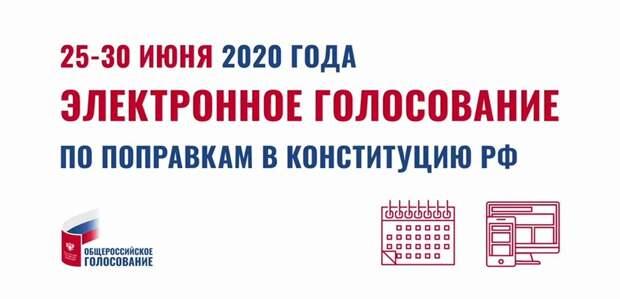 Уже 300 тысяч москвичей подали заявки на электронное голосование по поправкам в Конституцию