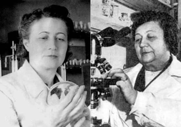 «Мадам Пенициллин»: Как советская женщина поборола холеру и нашла универсальный антибиотик