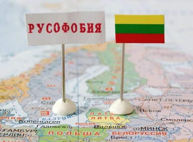 В Госдуме предложили наказать зарвавшихся литовцев: больно будет всем
