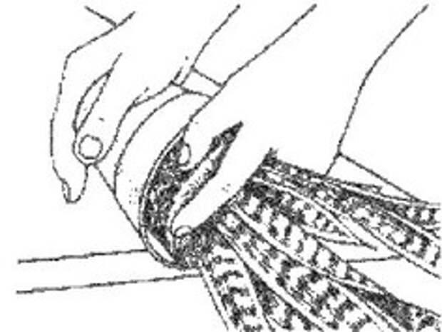 Пересадка сансевиерии ( тёщиного языка ) в картинках