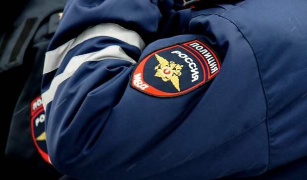 ВНижнем Тагиле полицейские установили личности избивших школьницу подростков