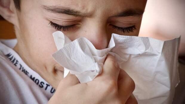 Аллергикам рассказали, что делать в период весеннего обострения