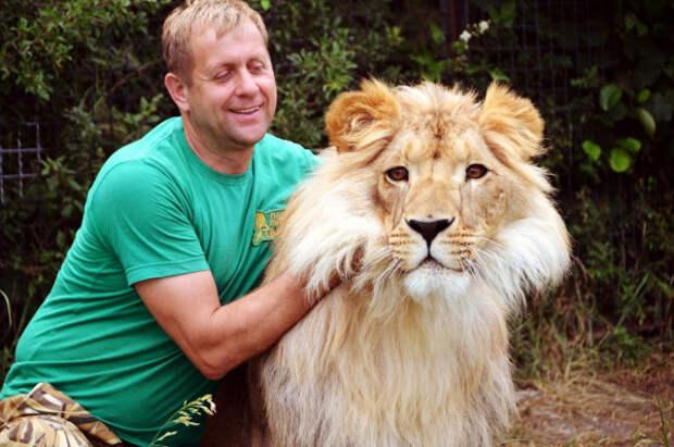 Владельца парка львов «Тайган» Олега Зубкова оштрафовали на 400 тысяч рублей