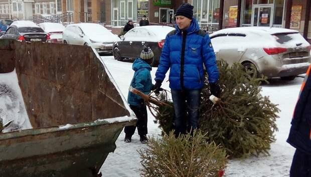 Более 7,5 тыс елок сдали на утилизацию жители Подмосковья в рамках областной экоакции