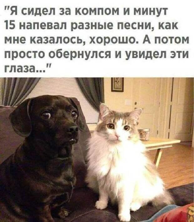 3416556_shik_13 (612x700, 53Kb)