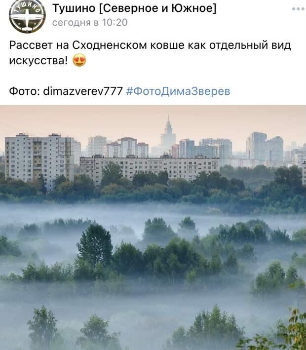 Фото дня: туман над Сходненским ковшом