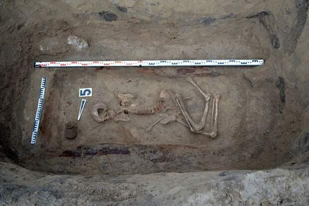 Древнее захоронение скифов нашли под Белокурихой