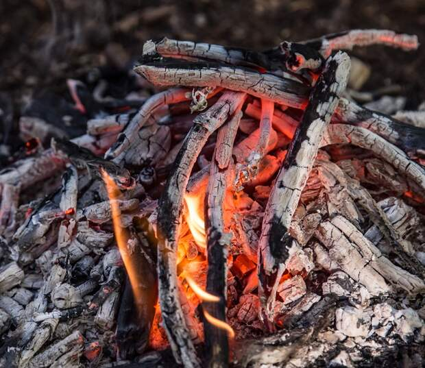 Когда шашлык испорчен, даже природа не радует. 9 правил, которые спасут и шашлык, и пикник