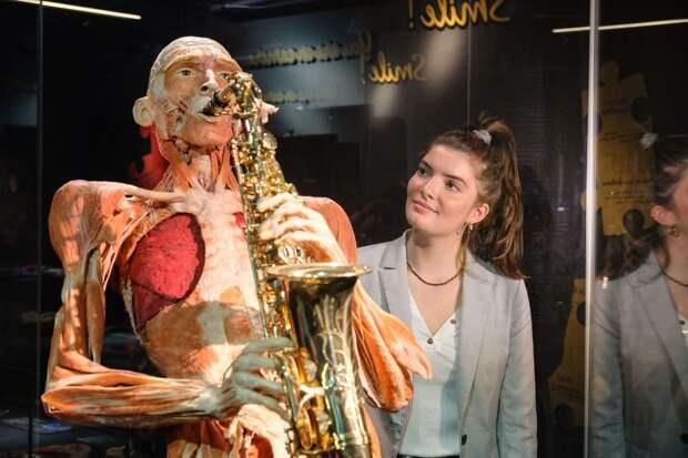 СКпроверит скандальную выставку человеческих тел