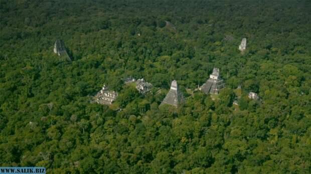 60 000 построек майя найдены в джунглях Гватемалы