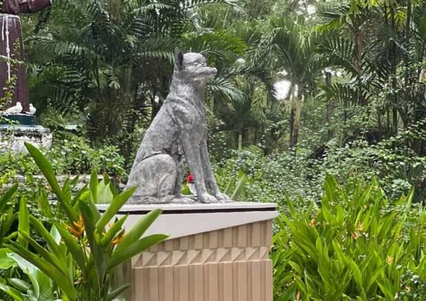 Первая статуя собаке-герою установлена на Филиппинах