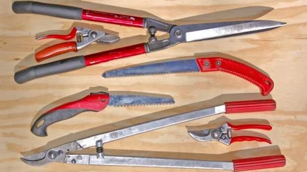 Инструменты лдя обрезки груши
