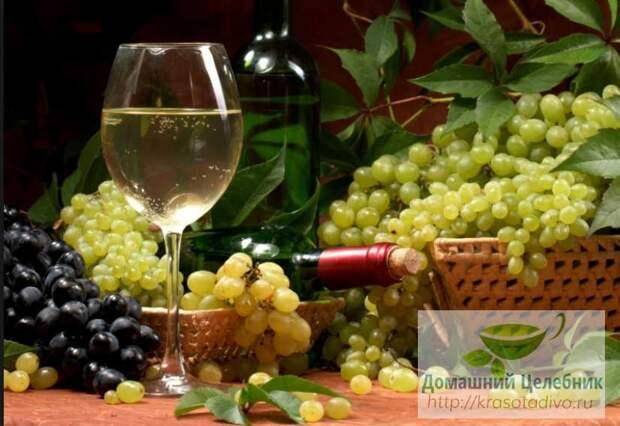 Что лечит виноград: очищаем сосуды, забываем о подагре! Всем хороши эти ягоды и листья