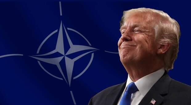 Трамп может преподнести НАТО неприятный сюрприз
