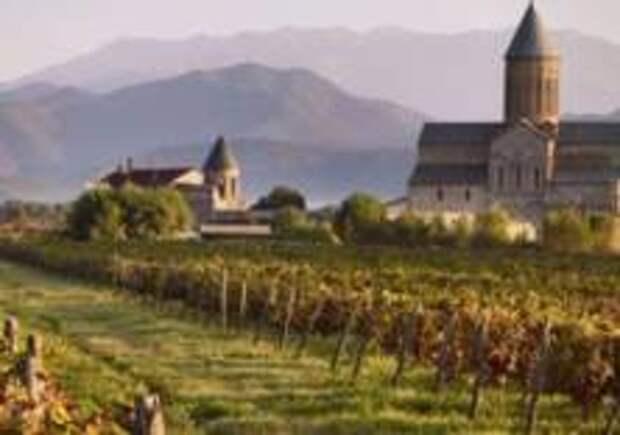 Гид по грузинскому вину