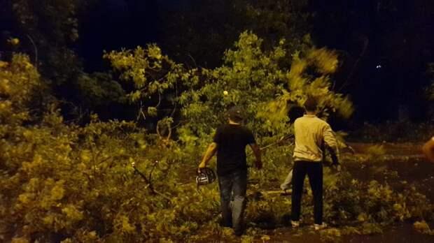 К устранению последствий ночного ливня приступили сразу же — «Жилищник» Свиблова