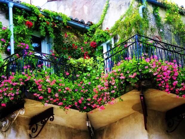 Озеленение балкона - это отличный способ обеспечить себе возможность наслаждаться ароматом цветов и растений.
