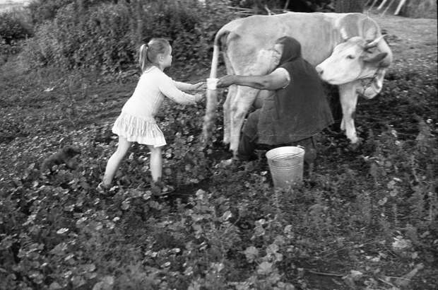 Хочу к бабушке в деревню
