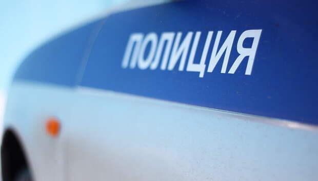 В Подольске разыскивают очевидцев кражи сетки для сбора новогодних елок