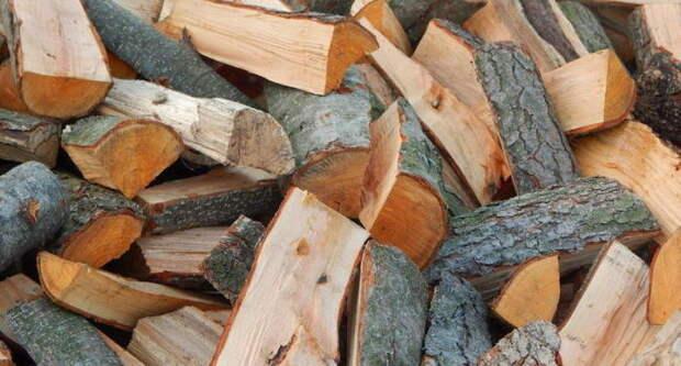 Дубовые дрова - лучше всего. /Фото: yandex.ru.