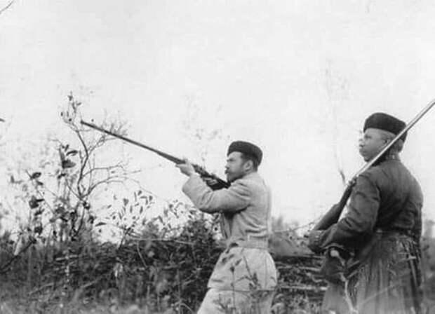 Николай II за время своего царствования лично расстрелял тысячи  собак и кошек