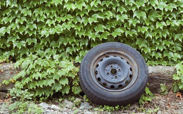 3 крутые штуки для дачи — из старых автомобильных дисков