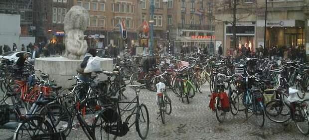 http://www.amstertam.ru/pics/bike_street.jpg