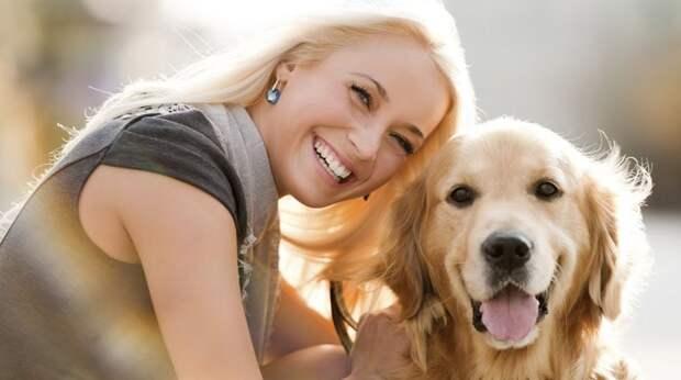 Частые ошибки в уходе за собаками, которые допускают не только начинающие, но и опытные хозяева