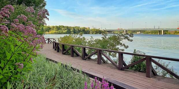 Фото дня: акватория Химкинского водохранилища и Ленинградский мост