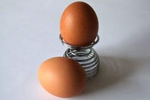 Какие куриные яйца наиболее полезны?
