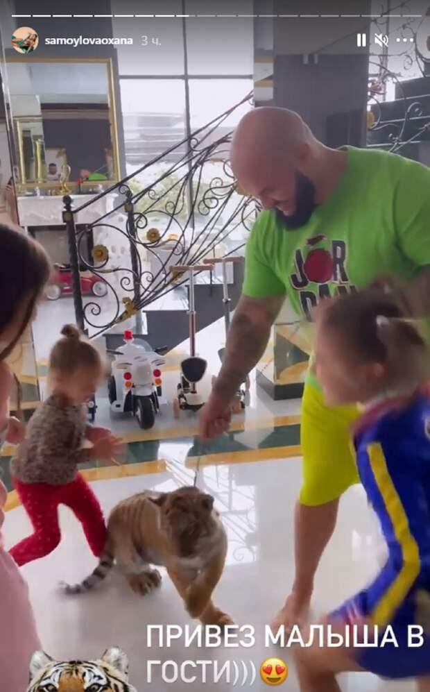 Джиган привёз своим детям живого тигрёнка для игр