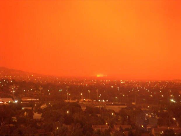 10 главных последствий лесных пожаров в Австралии
