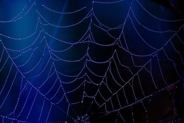 Хэллоуин: какие вечеринки ждут жителей Ижевска в самый страшный день в году