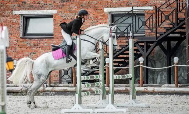 Спортсмены из Удмуртии заняли призовые места на конных соревнованиях в Перми