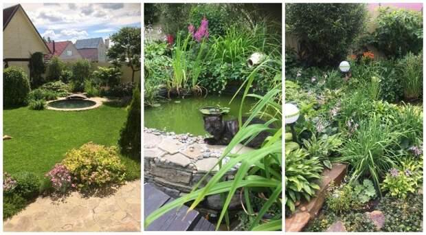 Сады России: коттеджный сад Оксаны Борсиевой