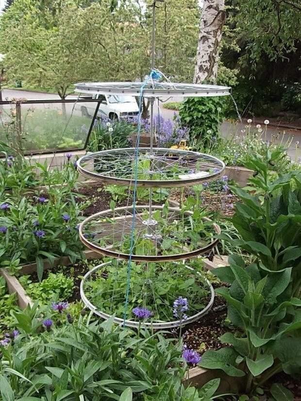 Идея на дачу: садовая шпалера из старых велосипедных шин