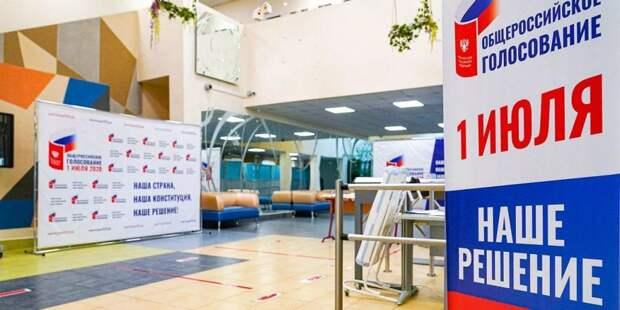 Костырко: Информация о базе данных голосования по Конституции - фейк. Фото: mos.ru