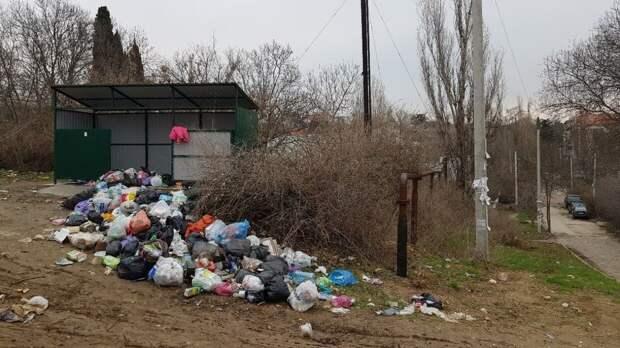 Россияне могут получить двойной штраф за неправильное обращение с мусором