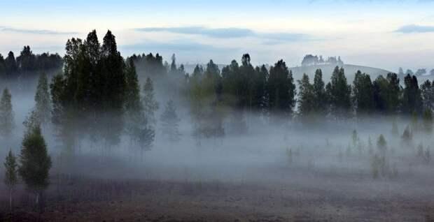 В Удмуртии 3 июля ожидаются грозы и туман