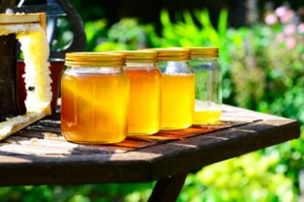 Как определить качество мёда?