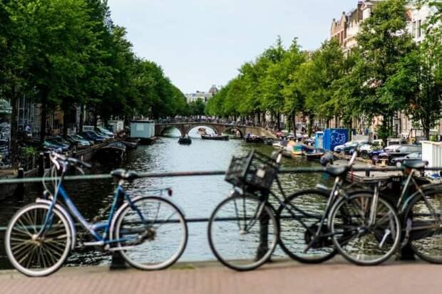 Страсбургские страдания: шофер, велосипед и сотка тысяч евро