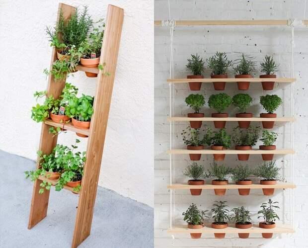 Вертикальное озеленение тоже выход: подвесные конструкции, этажерки, лестницы зеленый, лестницы, полки, растения, этажерки