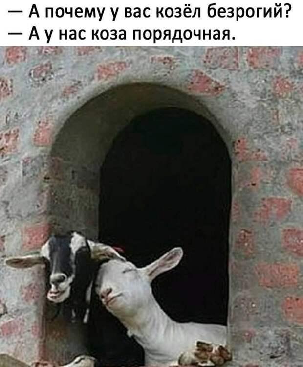 Одесский дворик. Балкончики напротив. Тихий вечер...