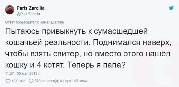 bez-nazvaniya-1-1